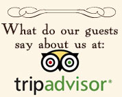 Check us out on Tripadvisor